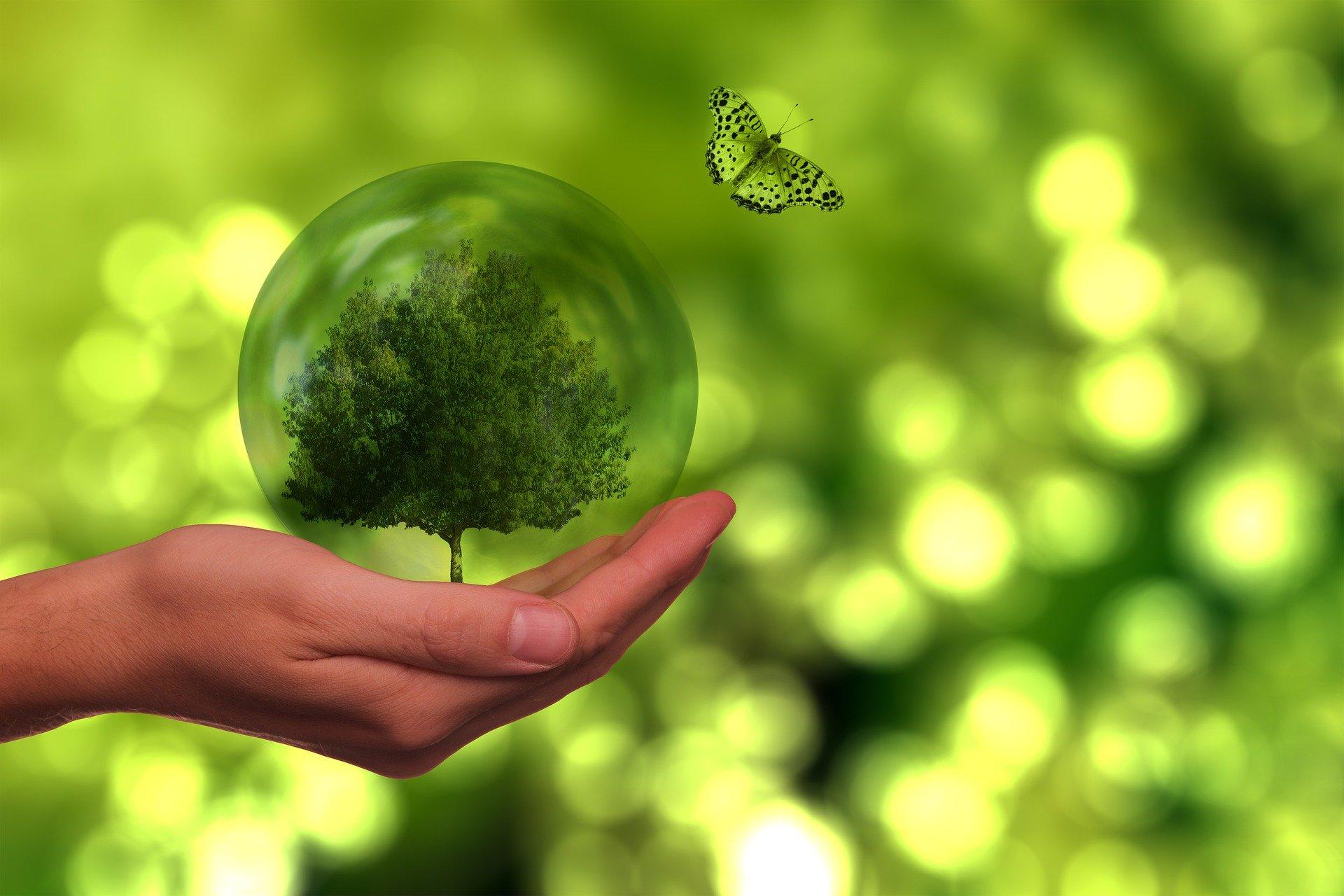 Con -S- de sostenibilidad